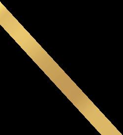 promo bow